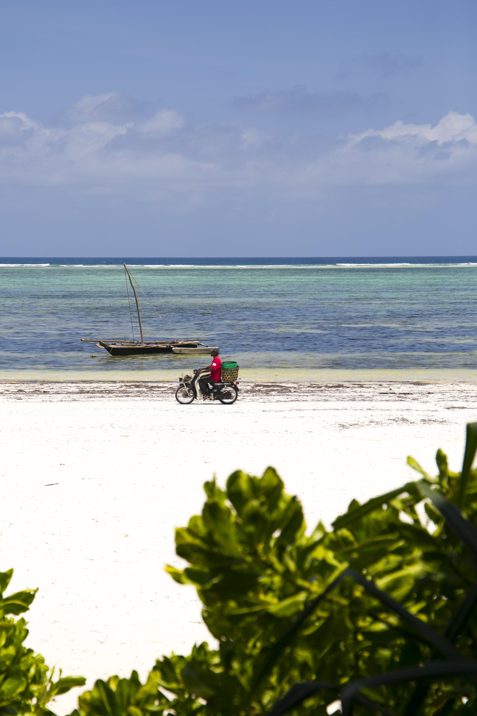 Onze heures-Zanzibar